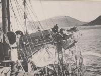 Спасение экспедиции Нобиле. Хроника событий. 9 июня