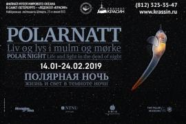 Скоро! Открытие уникальной выставки «Полярная ночь. Жизнь и свет в темноте ночи»