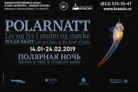 Exhibition opening: Polar night – Life and light in the dead of night